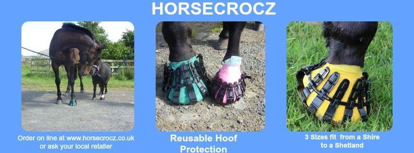 Horsecrocz Detail 1