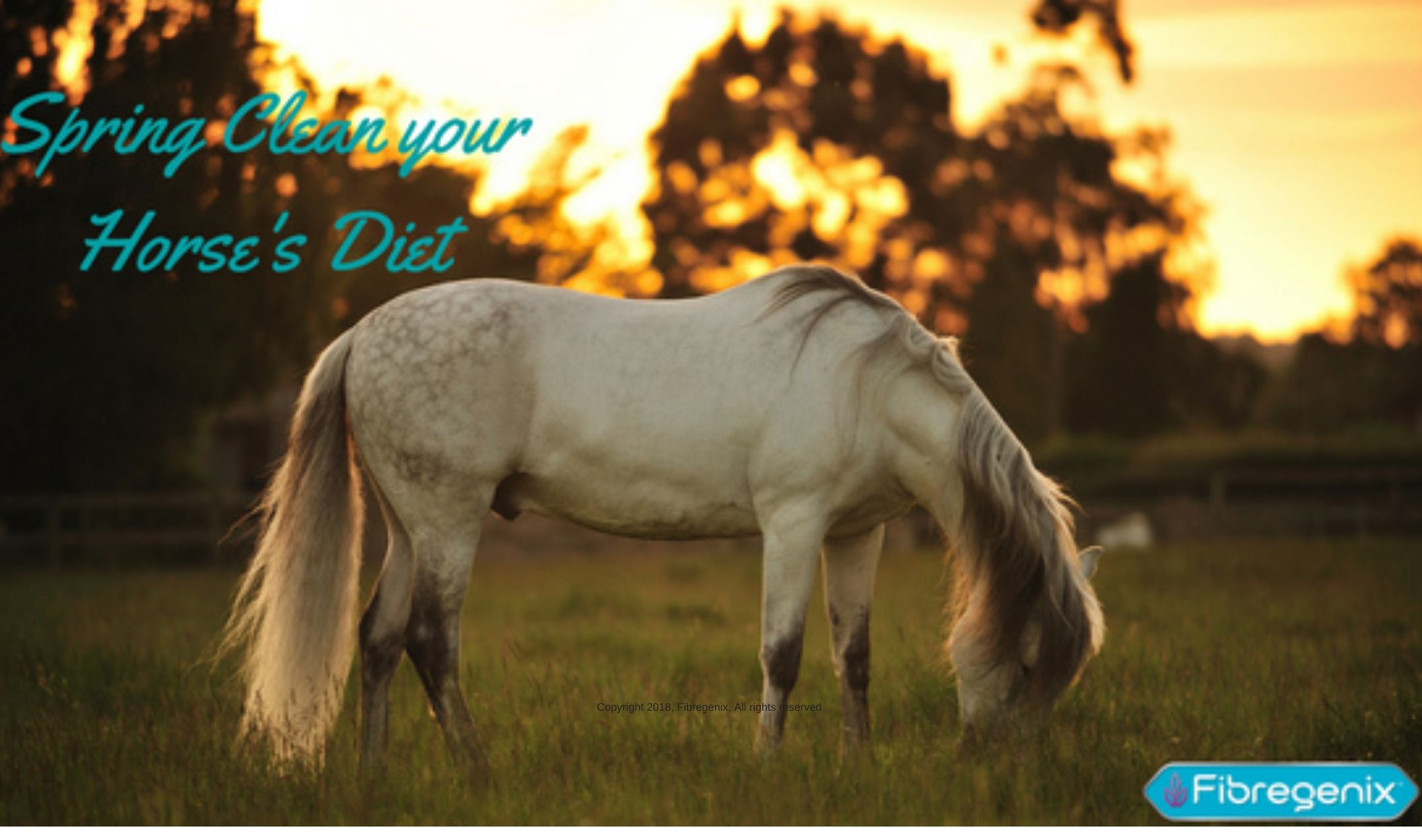 Spring Clean Your Horse's Diet