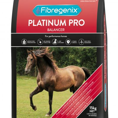 feed for performance horse