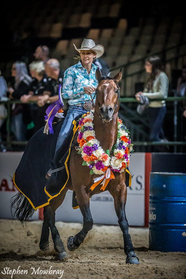 feeding western rodeo horses