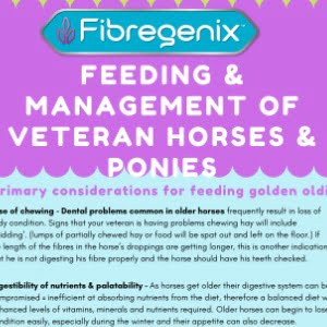 feeding veteran horses