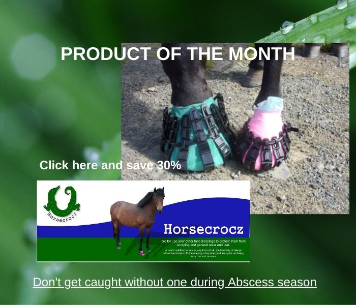 Home product of the month
